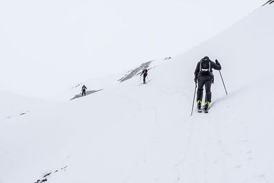 Trico Peak Ridge, Red Mountain Pass, CO, USA