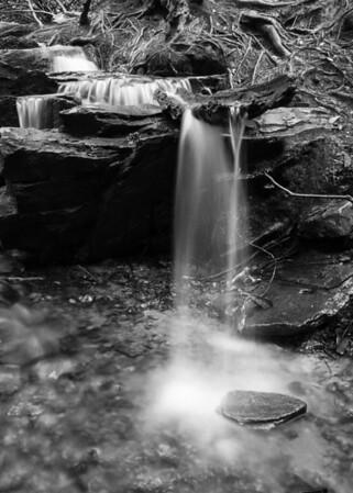Benton MacKaye Trail - GA
