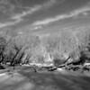 The frozen Ridley Creek