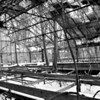 """Near the formal gardens the mansion once had a very large """"U shaped"""" greenhouse. You can see the remnants of the heating and water systems that run through the buildings. The park service has done a fairly awful job of maintaining this building, as you can tell"""