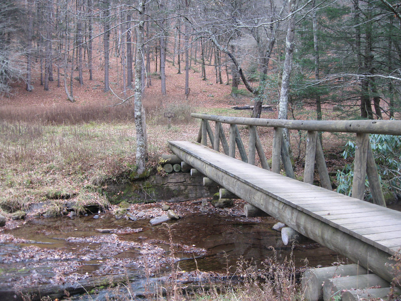 One sided bridge along the Seneca Creek Trail in West Virginia, Monongahela State Park