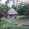 Our back yard at the farm in Kenya