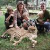 Cheetah Nairobi