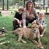 Cheetah, animal orphanage, Nairobi