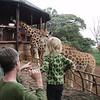 Florence meets a baby giraffe