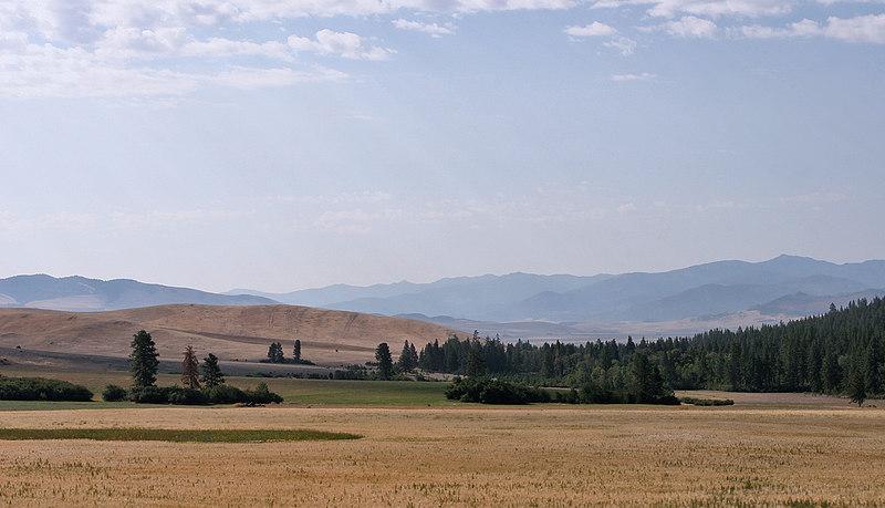 200608_Montana