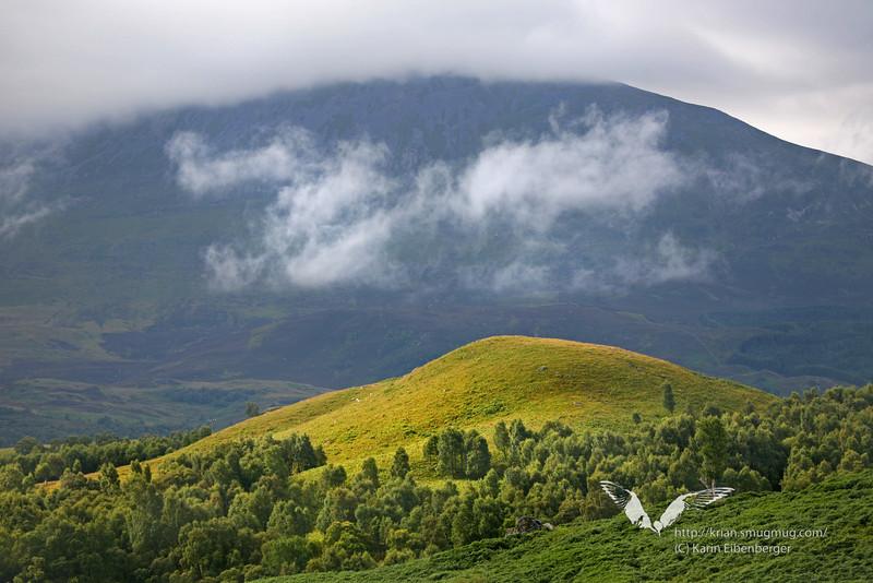 Wild, green Scotland.