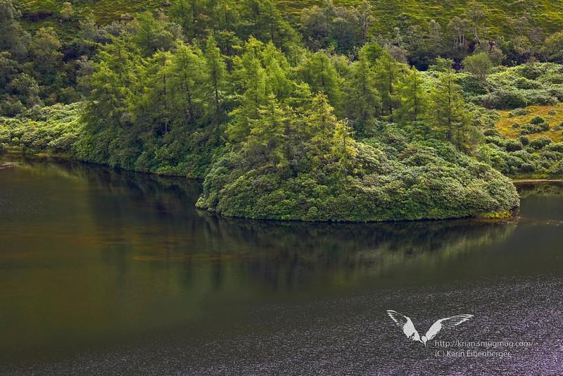 In the highlands. Glen Coe.