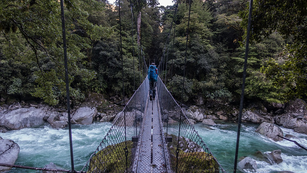 A fancy bridge crosses the Hollyford River at the start.