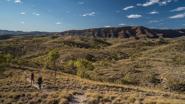 The track meanders towards Ormiston Gorge.