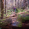 Hiking in Ramsey Draft, West Virginia