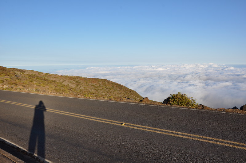 Driving down Haleakala is an adventure it self, the windy road has very steep fall offs that lead simply into puffy white clouds.