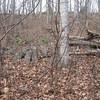 Ridgeside Cabin (basically a hole in the ground)