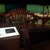 LOOK ITS AN ANKYLOSAURUS! (Emm's favourite dinosaur)