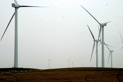 Vestas V80 turbines, blades feathered and still with only a light breeze. At peak production, each is capable of producing 1.8 mW. With 90 turbines, High Winds provides electricity for 75,000 homes...when the wind blows.