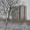 NIH Campus just after the snowstorm. There was almost 2 ft. of snow in the drifts around the trees.