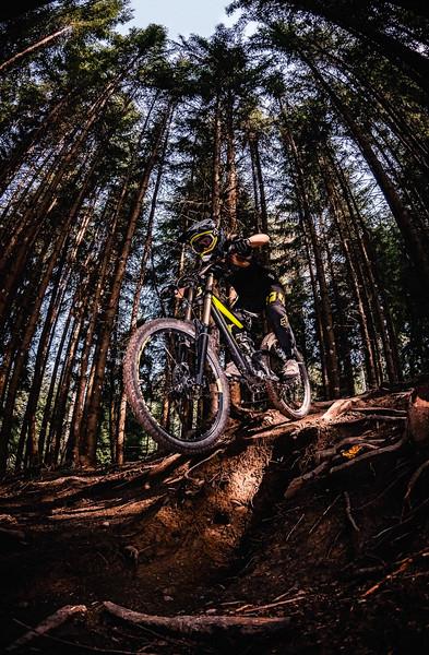 Pines & Bikes,  Mutters 2018, Antonia Dolezal