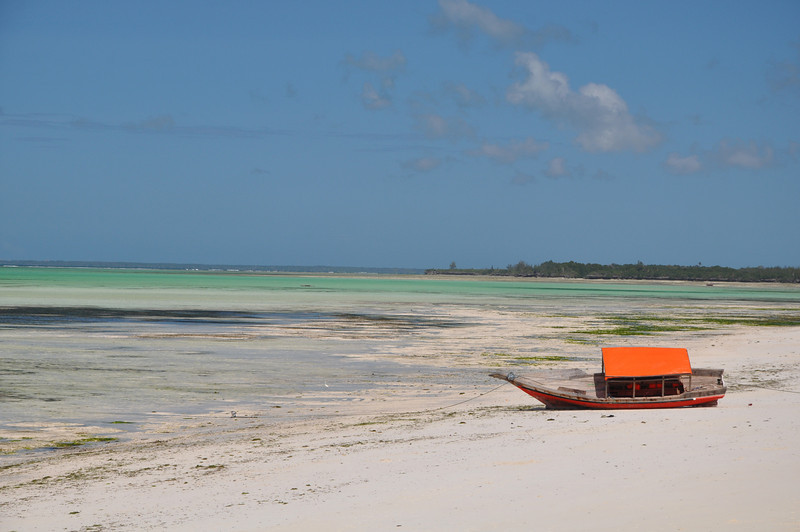 White sand beach during low tide at the Pongwe Beach Resort