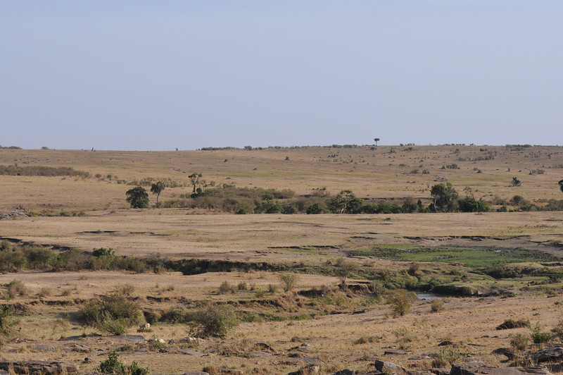 Looking out over the Mara