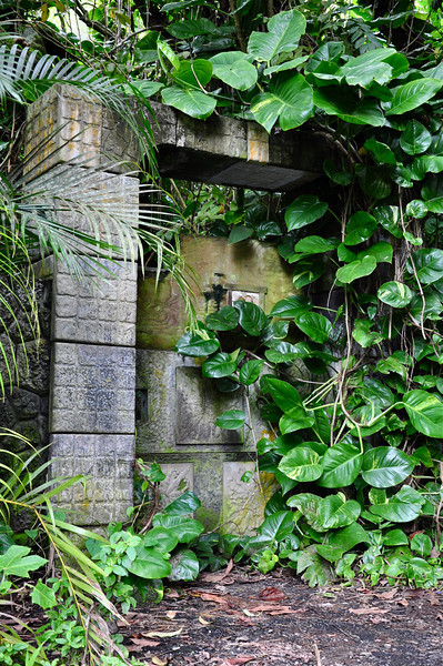 Old door that leads to a small waterfall.