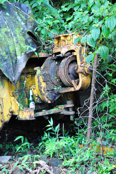 Abandoned construction equipment along Hana Highway that has been consumed by the jungle.