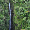 The 200 foot Lower Puohokamoa Falls.