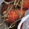 Trying the Spikey fruit along the highway