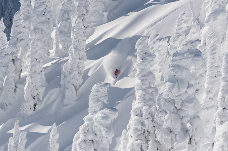 Through classic Mt Baker rime trees, Adam Ü carves his way through the backcountry