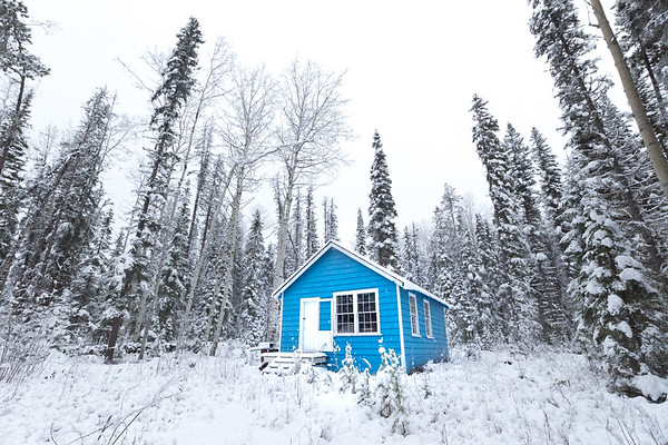 Little Blue Cabin