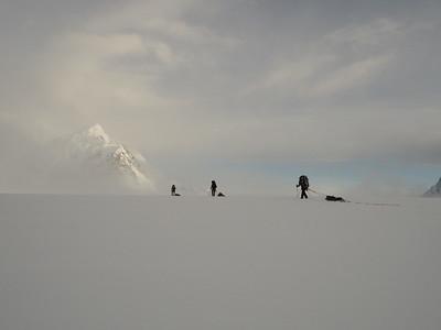 Misty Morn, Denali, AK