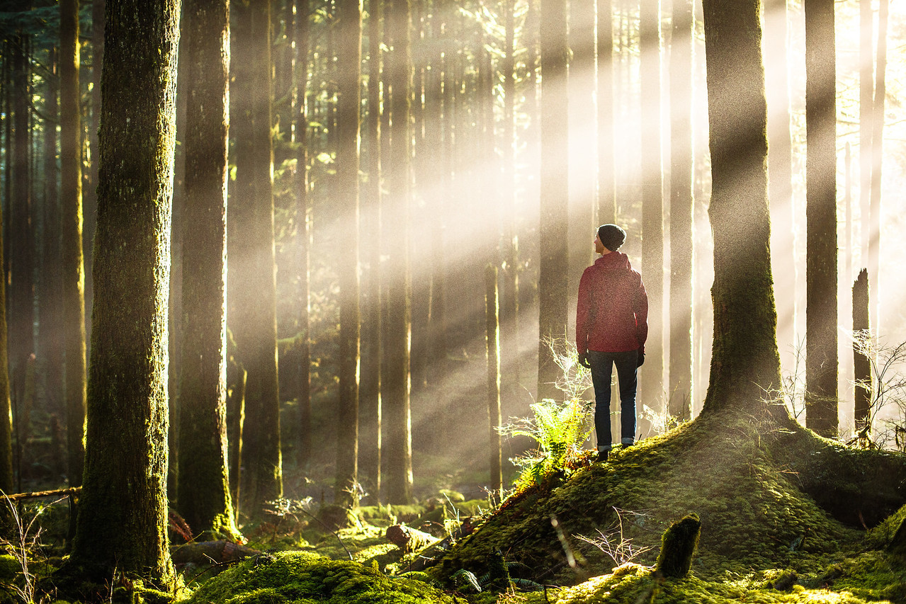 Michael Matti in the Sunrays of British Columbia