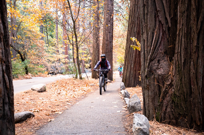 Biking Outta Ahwahnee (November 2020)