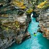 Athabasca Canyon