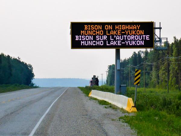 Bison warning