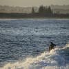 Lennox Head Surf Reserve