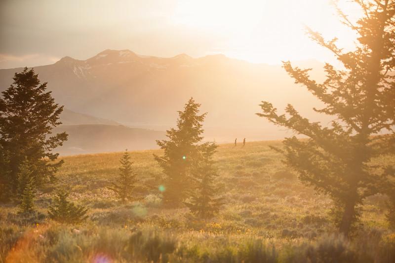 Jackson Hole, Wyoming. 2015