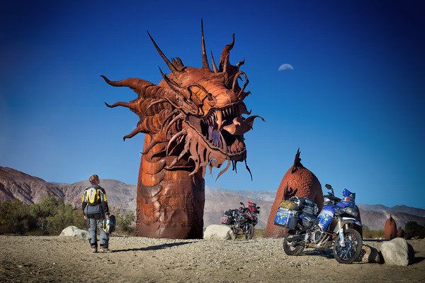 The Desert Dragon - USA