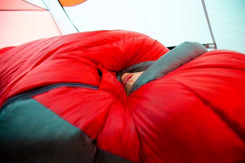 Within the Sleeping Bag (November 2020)