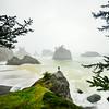 Oregon Coast Lookout