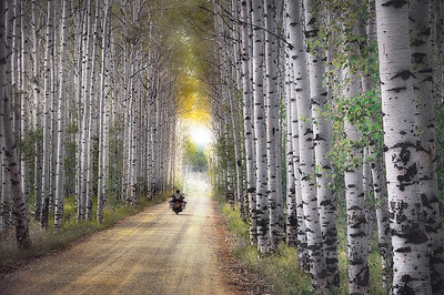Silver Alley, Colorado.