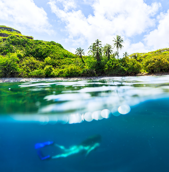 Pacific Swim
