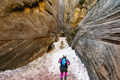 Daphnee Tuzlak takes in this snow-filled side canyon above the Zion Narrows.