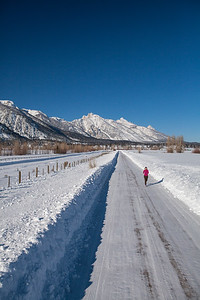 Winter Running, Jackson Hole. 2015