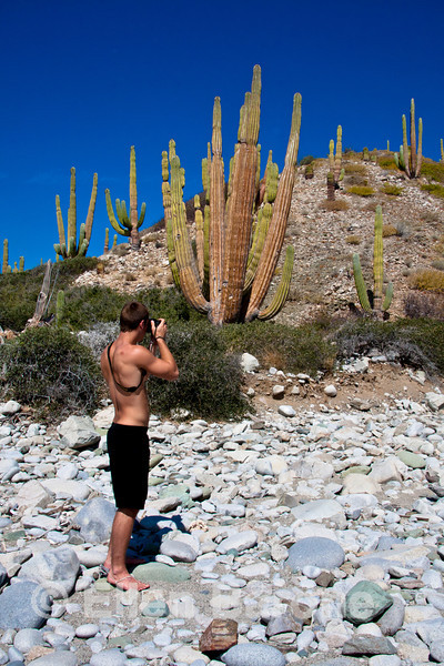 Photographing the huge cardon cactus at Punta Colorado, Sea of Cortez, Baja California, Mexico.