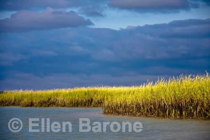 Salt marsh grasses, dramatic storm clouds, Hilton Head Island, South Carolina, USA, North America.
