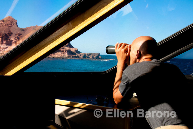Safari Quest engineer, Dirk Boschek, searches for whales from the wheelhouse, Sea of Cortez, Baja California, Mexico.