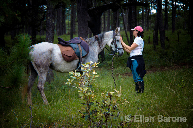 Time out in the pine-forested Sierra Madre mountains of southwestern Mexico during a horseback riding vacation.