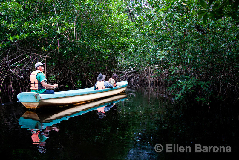 Mangrove boat tour, Madresal, a community-built eco-friendly beach camp Pacific Coast, Chiapas, Mexico.