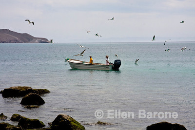Fishing life, Isla Coyote (Pardito), a small fishing island in the Sea of Cortez, Baja California, Mexico.