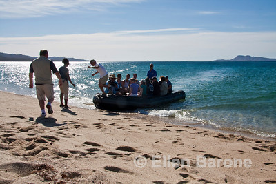 Safari Quest passengers land at Punta Salinas, Sea of Cortez, Baja California, Mexico.